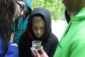 Students learn about nature at our yearly Black Rock Retreat.